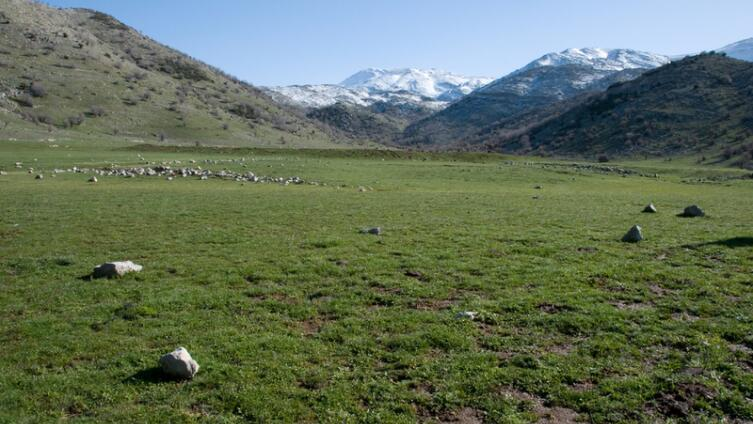 Гора Хермон весной