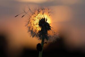 Что такое покаяние и почему оно «не работает»?
