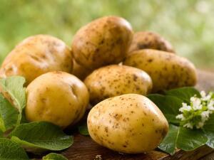 Есть ли секреты у картошки?