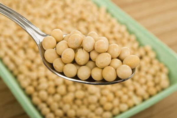 Как похудеть на соевой диете?
