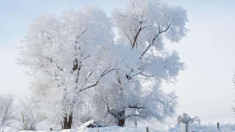 Солнцеворот: как встретить Новый год по обычаям предков?