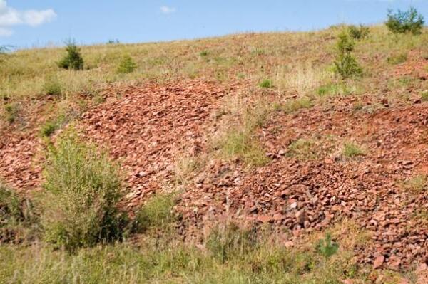Общий вид части карьера с ископаемыми отпечатками