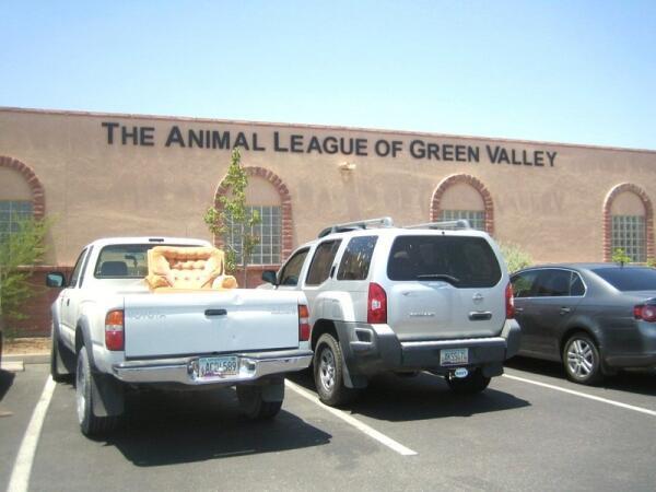 Приют для животных в Тусоне, штат Аризона