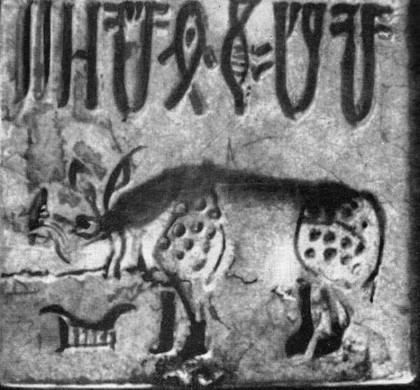 Печать с изображением носорога времен древнеиндийской цивилизации Мохенджо-Даро (5 тыс. лет назад)