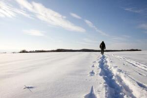 Стоит ли надеяться северянам на компенсацию их расходов на проезд к местам отдыха?