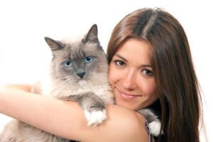 Кто в доме хозяин: вы или кошка?