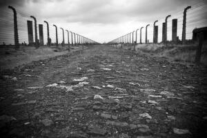 Сталин и военнопленные: есть ли связь? Юридический аспект Женевской конвенции