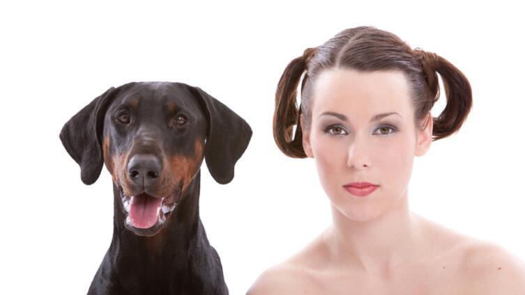 Отчего болеют домашние животные?