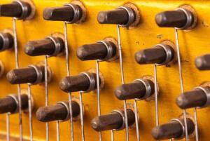 Как освоить музыкальный инструмент? Многоголосные инструменты