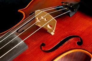 Как освоить музыкальный инструмент? Мелодические инструменты