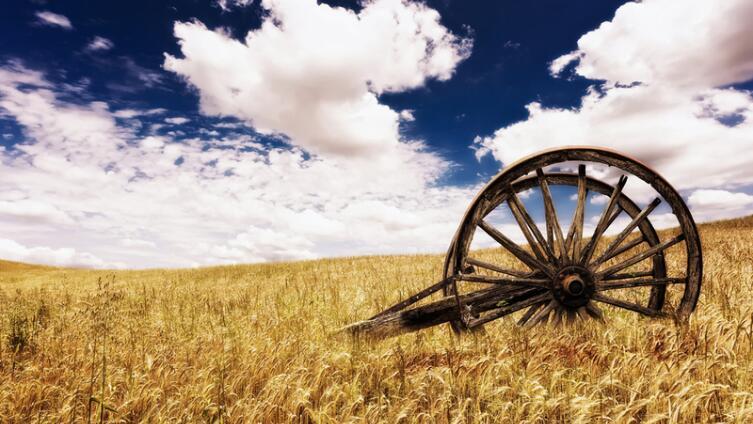 Зачем нам цикл Кребса, или Где зарыт старческий маразм?