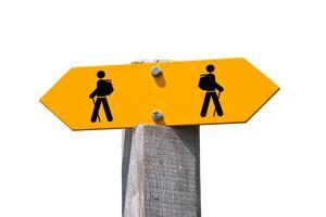 Бифуркация, или Что такое «Правило нужного момента»?