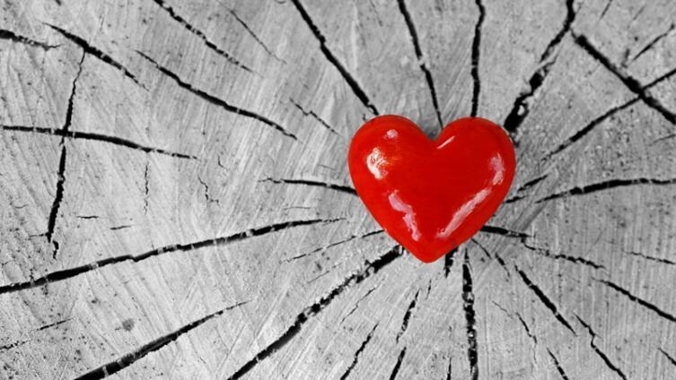 Ревность правит миром?