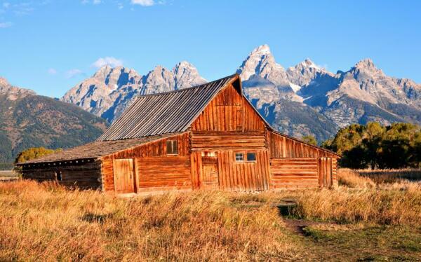 Какова современная структура и организация общины мормонов?
