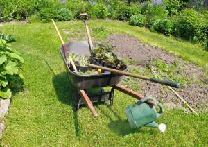 Как получить хороший урожай на своей даче без всякой химии?