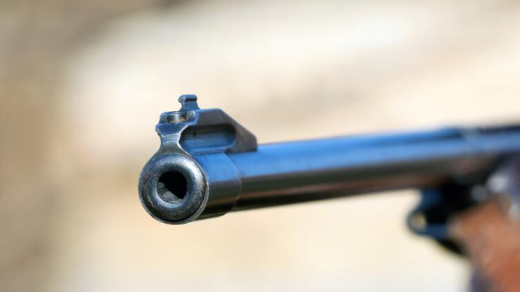 Почему ружьё 410-го калибра в США называют «садовый карабин»?
