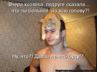 kotomatrix.ru