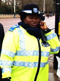 Лондонский полицейский