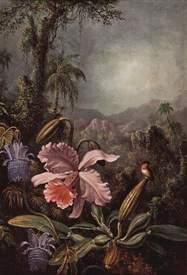 Orchideen, Passionsblumen und Kolibris