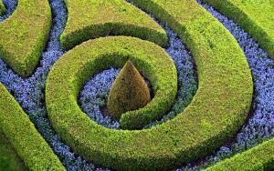 Ландшафтный дизайн. Творчество или рутина?