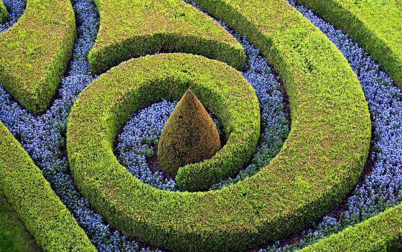 Ландшафтный дизайн творчество или