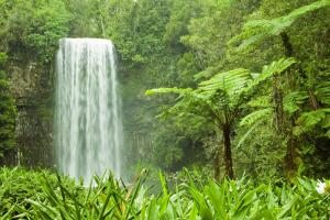 Каковы свойства и качество природных вод?