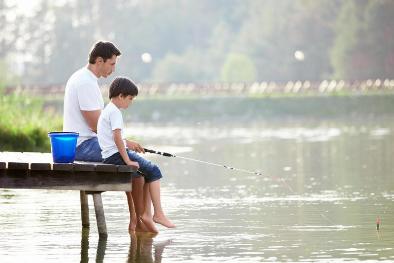картинка рыбалка летом