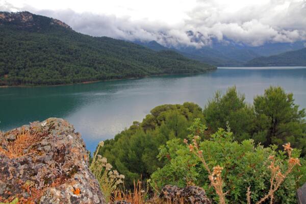 Какие существуют программы наблюдений за качеством поверхностных вод?