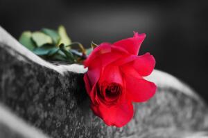 Бывает ли бракованная память?
