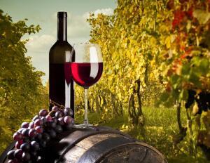 Что же это за вино такое - «цимлянское»? Часть 2