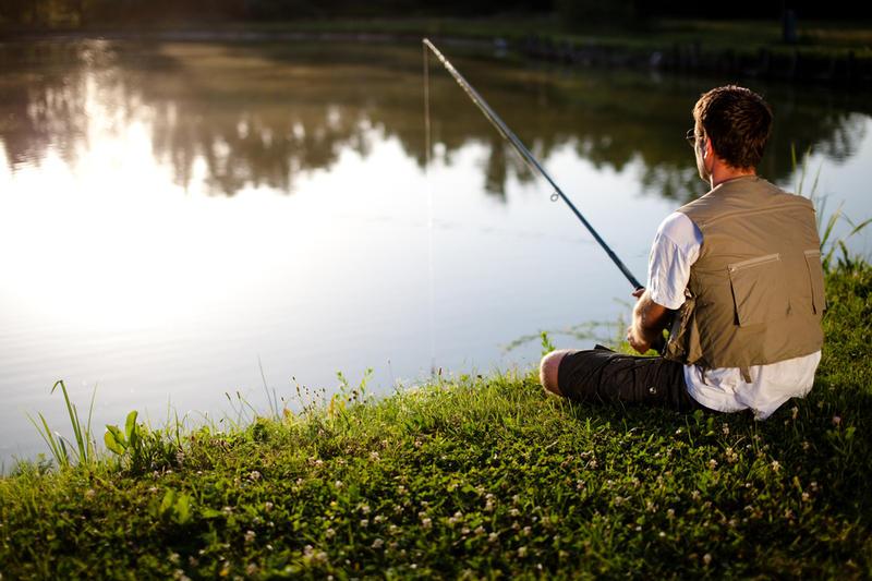 Как ловить рыбу в пруду? | Физкультура и спорт | ШколаЖизни.ру