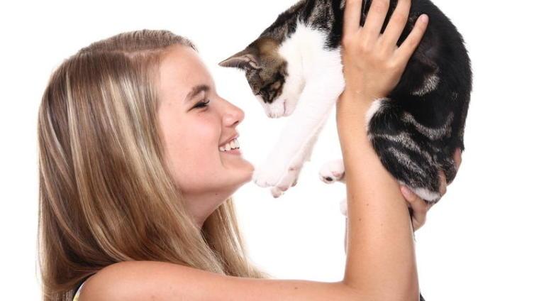 Чем может быть полезна кошка в доме?