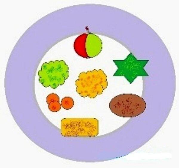 Так должна выглядеть тарелка с едой у ребёнка с плохим апетитом.