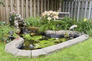 Как почистить искусственный пруд на своём участке?