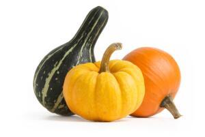 Чем полезны блюда из тыквы?