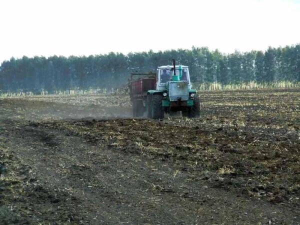 Внесение органических удобрений на полях хозяйства