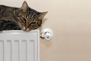 Как платить за отопление?