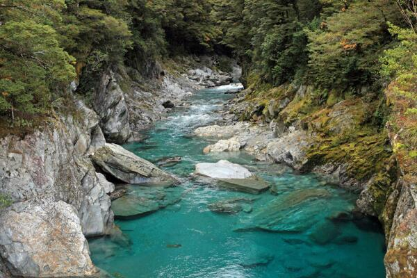 Волшебство Новой Зеландии