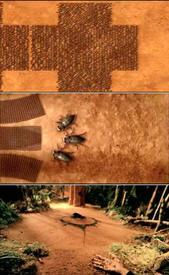 Кадры из клипа «Links 2-3-4».
