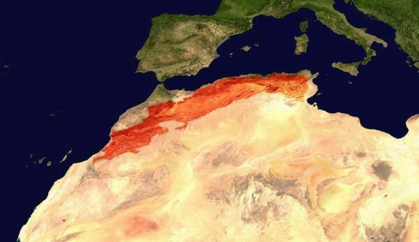 Карта, показывающая расположение гор Атлас на севере Африки