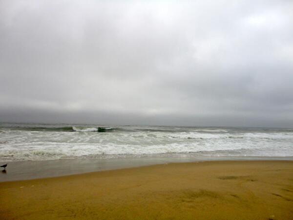 Воды Тихого океана