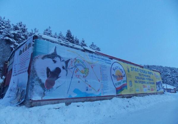 19-20 января Пряжа принимала участников очередного этапа Кубка Мира по гонкам на собачьих упряжках