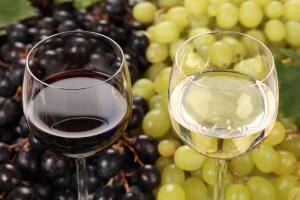 Что такое САТ для созревания и правильного выбора сортов винограда?