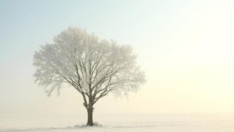 Одиночество - сигнал к действию?
