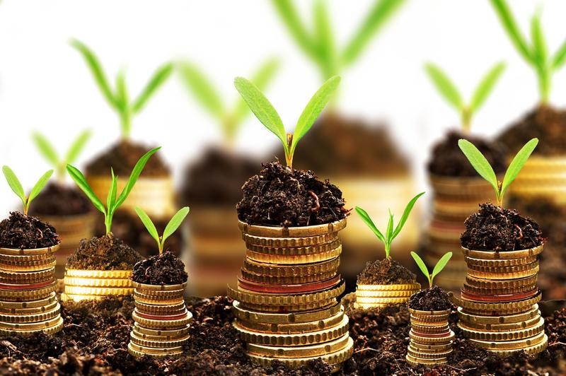 основная сумма денег и ее значение