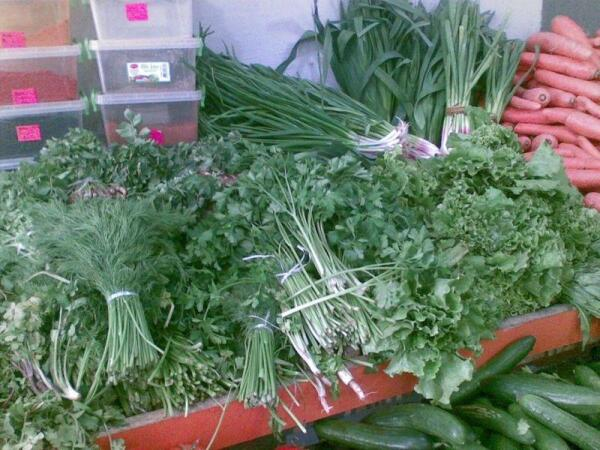 В любое время года на базаре можно купить разную зелень и приправы ( на заднем плане между луком и чесноком - тархун)