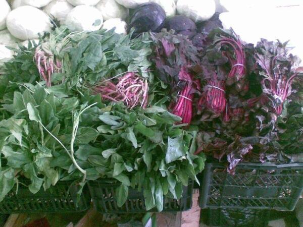 Цицмат слева на переднем плане, сзади шпинат и бурачные листья