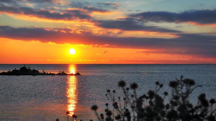 Отдых на Чёрном море. Давайте поедем в Григолети?