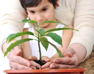 Быть или не быть детскому саду в жизни ребенка?