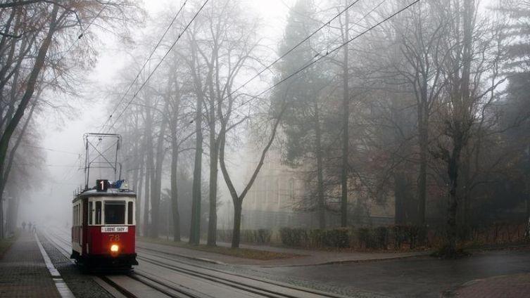 Так ли страшны трамваи?